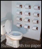 toilet-paper-toilet