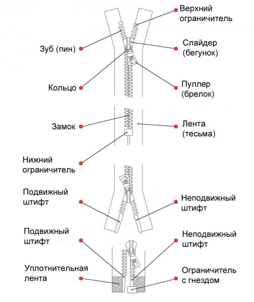 Анатомия-молнии