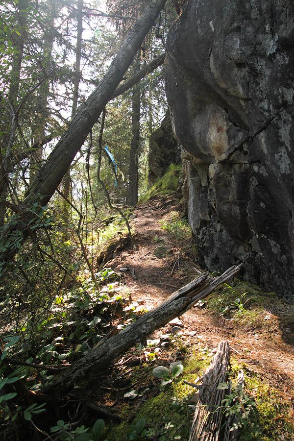 Тропа вдоль скал
