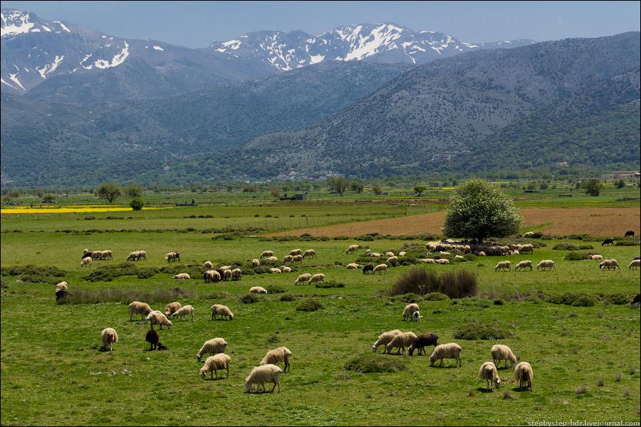 Лассити, экскурсии Крит, гид Крит