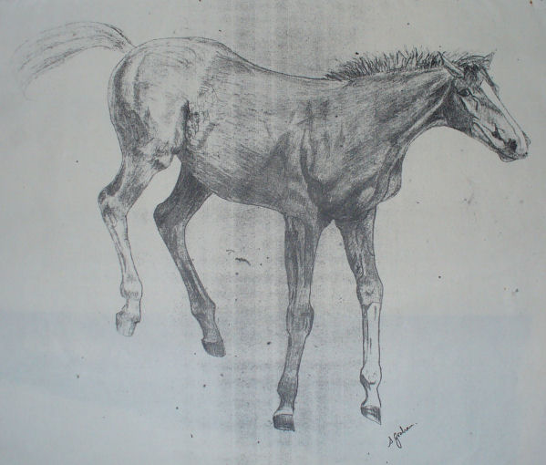 Bad digital photo of a very old photocopy of a pencil drawing.