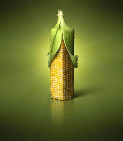 One Eyeland. Square corn by Steve Nozicka