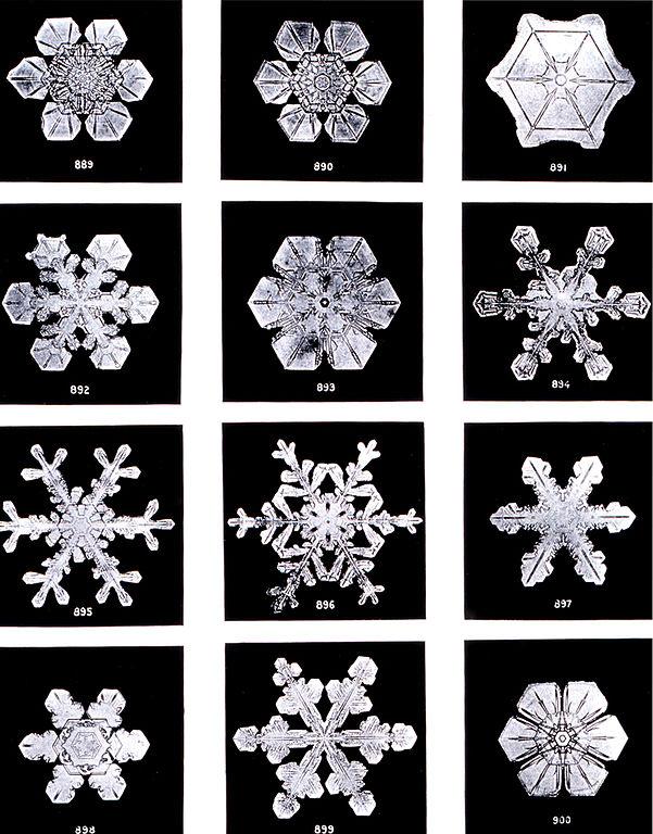 Snowflakes Wilson Bentley  Фотографии снежинок 1902 года
