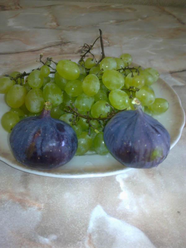 Инжир и виноград из Крыма, 03 сентября 2013