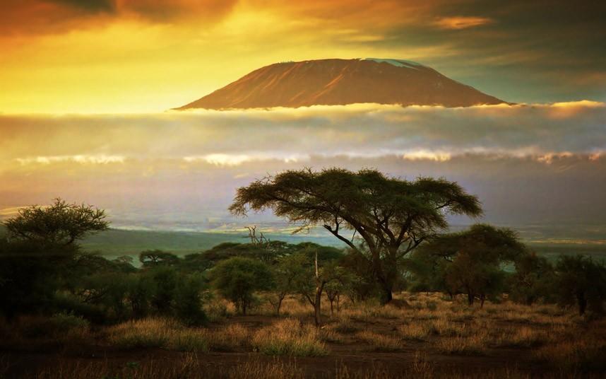 Фантастическая Кения. Фото AP