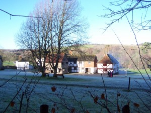 Weald and Downland 291213 (1)