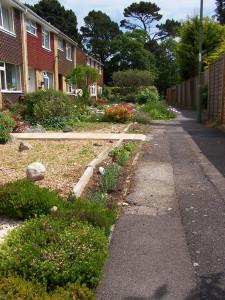 Front Garden 310514 (1)