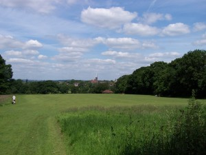Hampstead Heath 120614 (1)