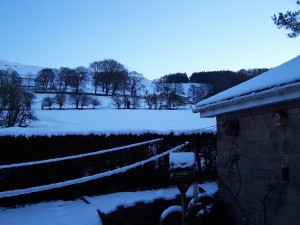 Snow in Bamford 271214 (7)