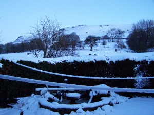 Snow in Bamford 271214 (5)