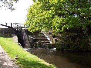Slaithwaite Canal Walk 160515 (5).JPG