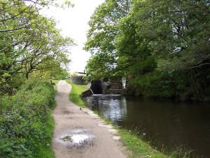 Slaithwaite Canal Walk 160515 (4).JPG