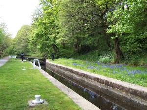 Slaithwaite Canal Walk 160515 (2).JPG