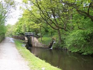 Slaithwaite Canal Walk 160515 (1).JPG
