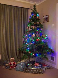 Christmas Day 2015 (5).JPG