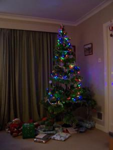 Christmas Tree 251216 (3).JPG