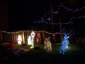 Christmas Lights 251216 (12).JPG