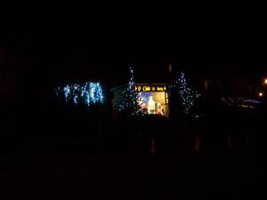 Christmas Lights 251216 (7).JPG