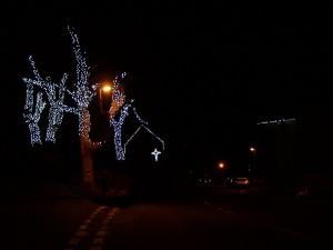 Christmas Lights 251216 (3).JPG