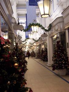 Christmas Lights 121216 (36).JPG