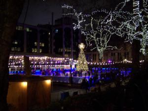 Christmas Lights 121216 (6).JPG