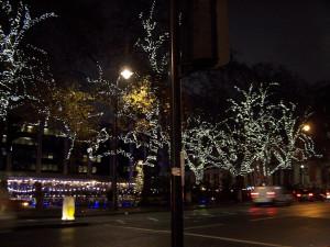 Christmas Lights 121216 (2).JPG