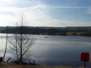 Tittesworth Reservoir 140311 05