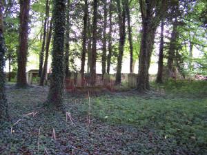 Nutley Churchyard 140812 (4)