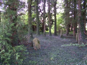 Nutley Churchyard 140812 (7)