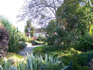 Fareham Sensory Garden 090912 (9)