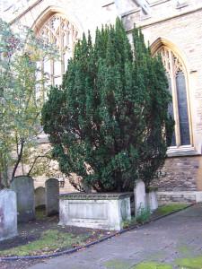 St Pauls Church Bedford 181112 (14)