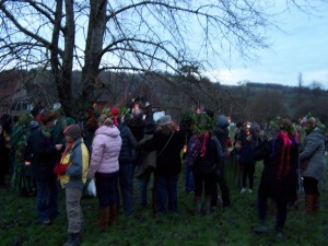 Weald and Downland 021212 (63)