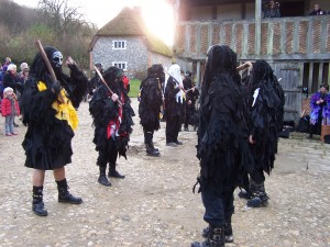 Weald and Downland 021212 (41)