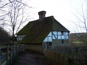 Weald and Downland 021212 (8)