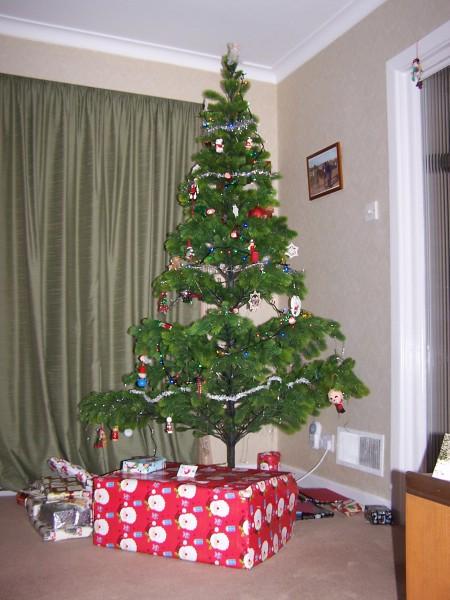 Tree 251212 (1)