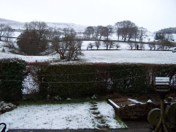 Snow 100313 (6)
