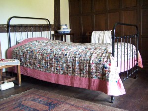 Canons Ashby 190413 (53)