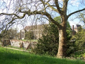 Eltham Palace 060513 (36)