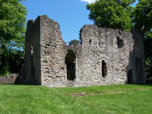Netley Abbey 270513 (06)