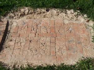 Titchfield Abbey 270513 (07)