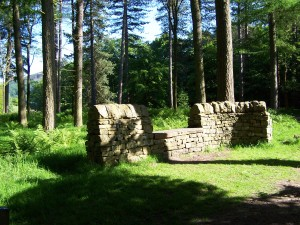 Derwent Valley Walk 070613 (110)