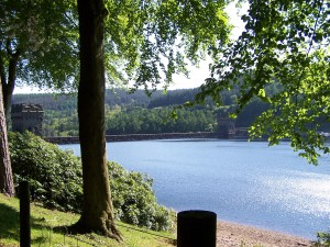 Derwent Valley Walk 070613 (102)