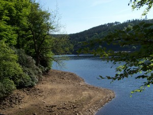 Derwent Valley Walk 070613 (100)