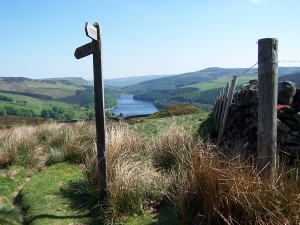Derwent Valley Walk 070613 (64)