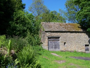 Derwent Valley Walk 070613 (48)