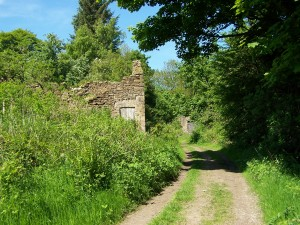 Derwent Valley Walk 070613 (44)