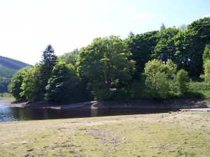 Derwent Valley Walk 070613 (41)