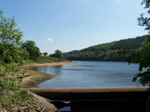 Derwent Valley Walk 070613 (30)