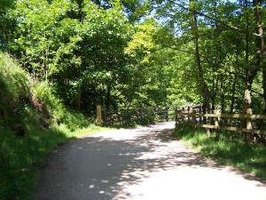 Derwent Valley Walk 070613 (29)
