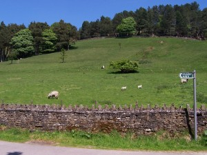 Derwent Valley Walk 070613 (11)